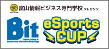 Bit e-Sports CUP